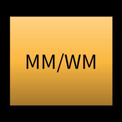 SAP® MM + WM Training